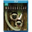 BBC Madagascar 2011