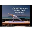 Ashtanga Yoga Beginners Practice - آموزش ویدئویی یوگا