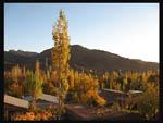 پاییز روستا