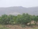 روستای سرسبز کماللو